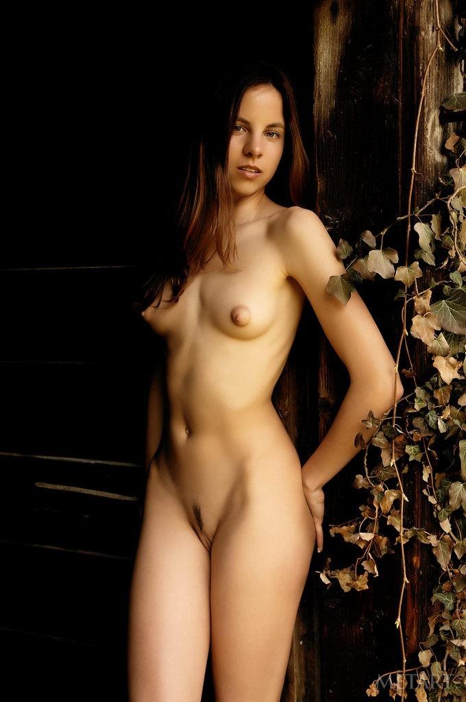 Skinny brunette posing completely naked