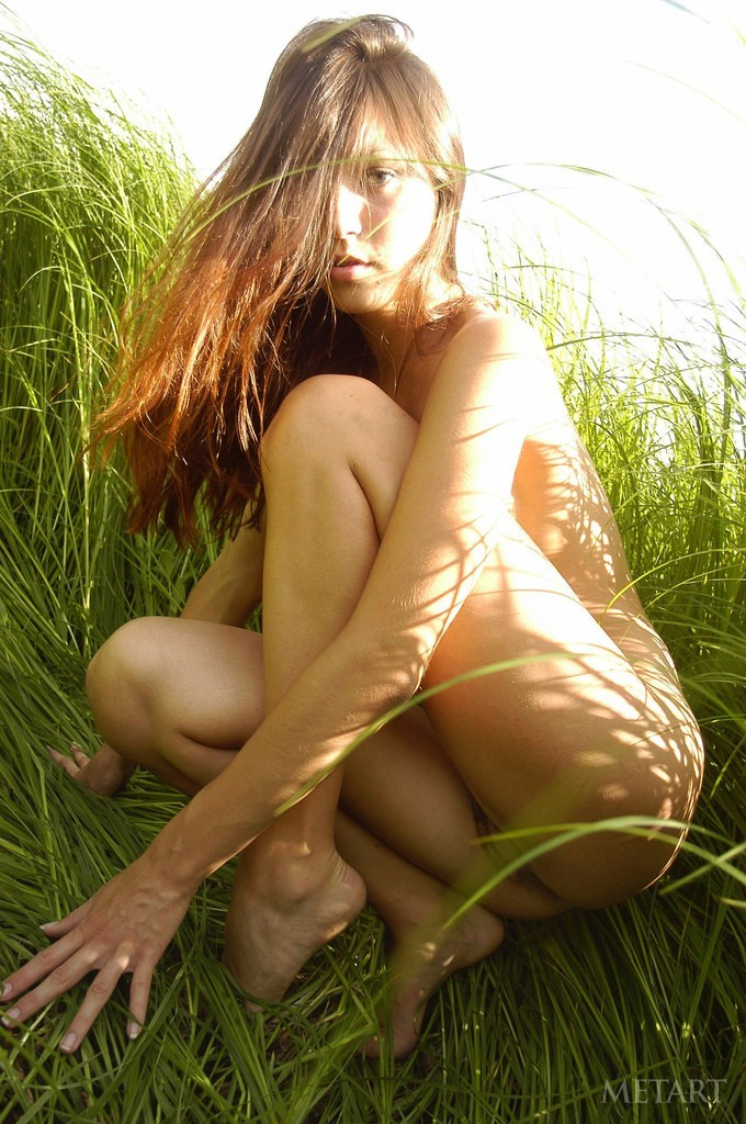 Gorgeous young girl posing in a field