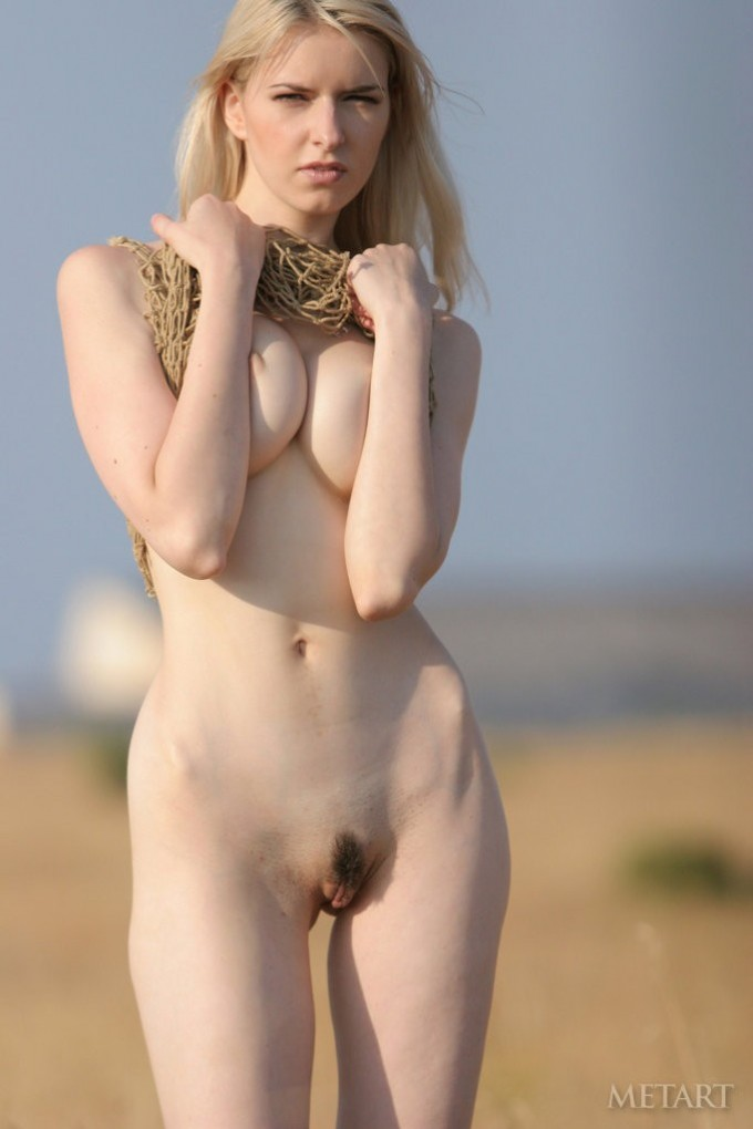 Blonde is in a yellow field of wheat